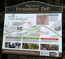ferniehurst